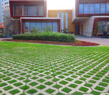 ECOLOGICAL GRASS PAVERS